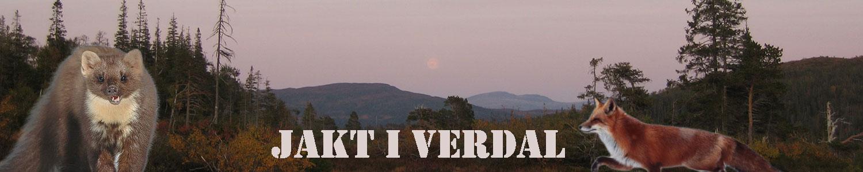 Jakt i Verdal
